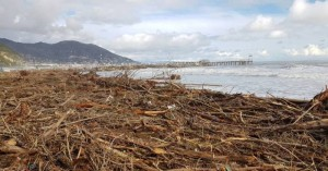 Rifiuti spiaggiati. Necessari investimenti sulle emergenze ambientali