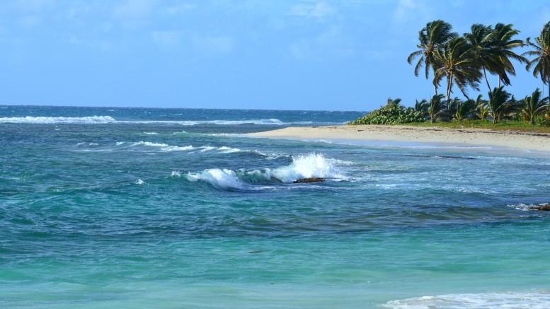 Isole della Guadalupa