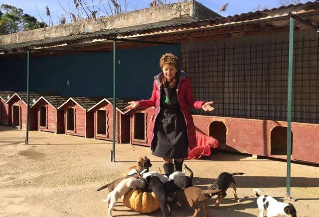 Carmelita Bellini, Presidentessa Dog village
